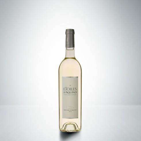etoile-2013-blanc